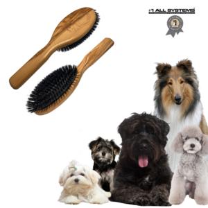 Hundebørste kvalitets Bristle børste #1All Systems