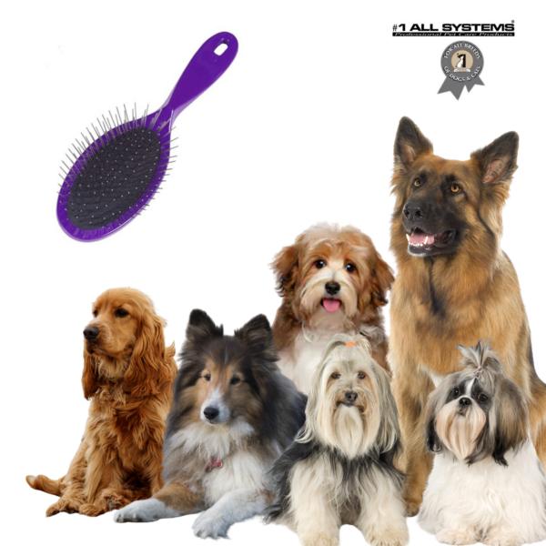Hundebørste kvalitets PinBrush #1 All Systems