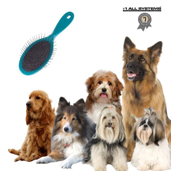 Hunde børste Pin Brush stor TURKIS