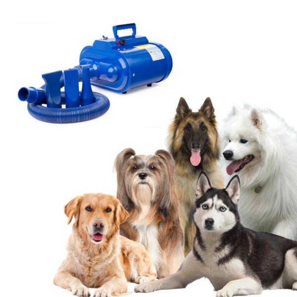 Hunde blower dobbeltmotor store hunde BLÅ