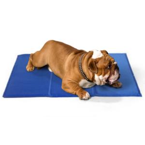 Kølemåtte hund effektiv i varmen MEDIUM