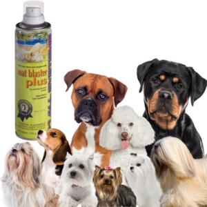 #1 All Systems balsamspray filterknuser MAT-BLASTER®