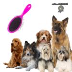 Hundebørste langhåret hund #1 All Systems