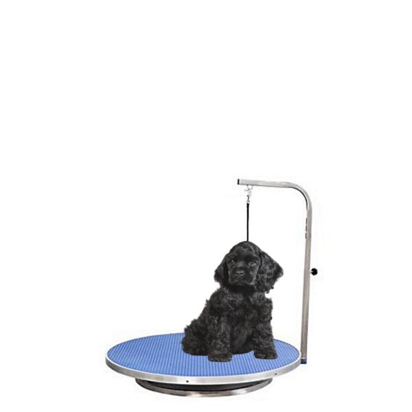 Hundetrimmebord til lille hund med galge