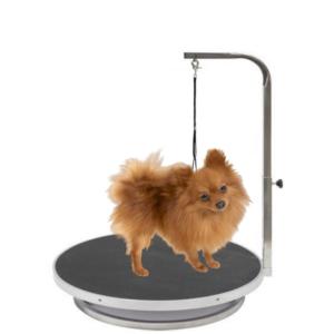 Hundetrimmebord lille til hund med galge