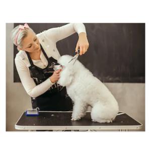 Foldbart hundetrimmebord kvalitets udstillingsbord SMALL sort