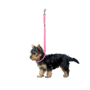 Trimmebord galgesnor pink til hund med-karabinhage
