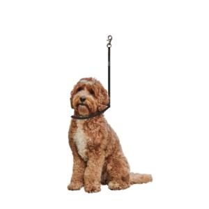 Trimmebord galgesnor sort til hund med-karabinhage